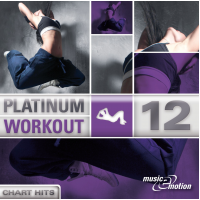 Platinum Workout 12 - Chart Hits