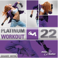 Platinum Workout 22 - Chart Hits
