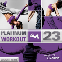 Platinum Workout 23 - Chart Hits