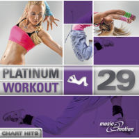 Platinum Workout 29 - Chart Hits